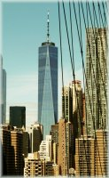 Immensity-WTC-NYC.jpg